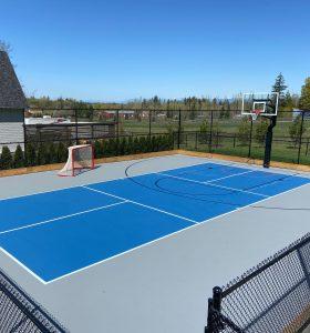 Backyard Basketball and Hockey